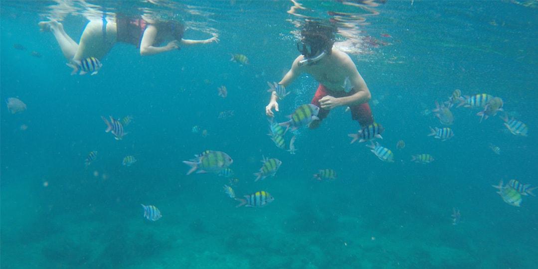 Tailândia snorkel